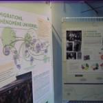 L'exposition est visible au Patio jusqu'au 25 avril. (photo : BB)