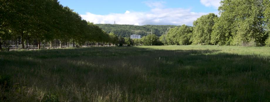 Une ferme urbaine à la Villeneuve ?